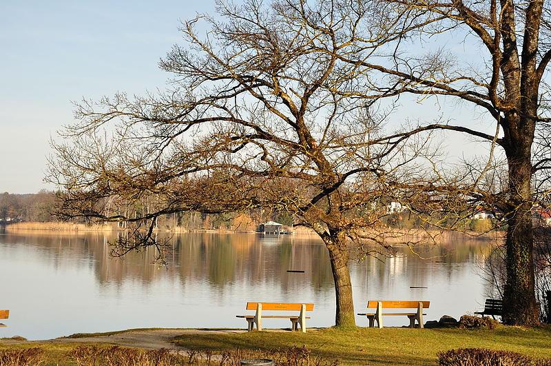 Der See im März